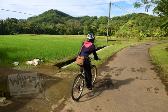cewek jilbab bersepeda di kawasan pedesaan sawah di seyegan sleman yogyakarta