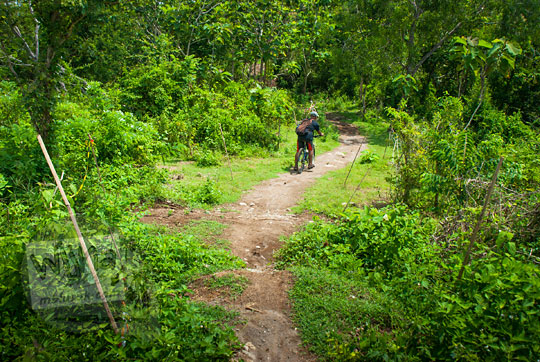 jalur trek sepeda downhill masuk hutan di belakang candi ijo sambirejo prambanan yogyakarta pada zaman dulu April 2017