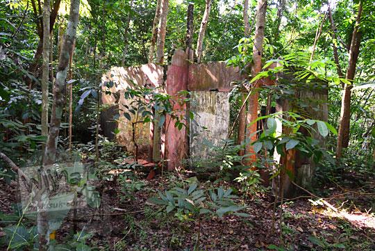 rumah yang terbengkalai di dalam hutan di dusun nglepen sumberharjo prambanan