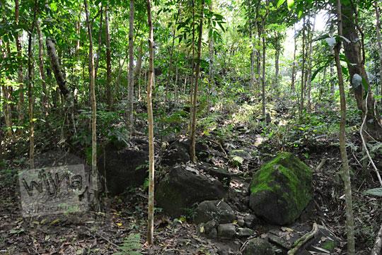 wujud gumuk bukit yang disebut warga sebagai candi kiai wongso pati di dusun nglepen sumberharjo prambanan