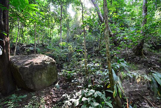 misteri sejarah bukit gumuk candi kiai wongso pati di dusun nglepen sumberharjo prambanan