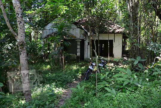 rumah tua angker di dalam hutan dusun nglepen sumberharjo prambanan