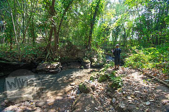 wilayah hutan yang dikeramatan warga dusun segaran tirtomartani kalasan sleman