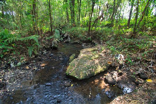 tepi sungai watu gilang di dusun segaran tirtomartani kalasan sleman