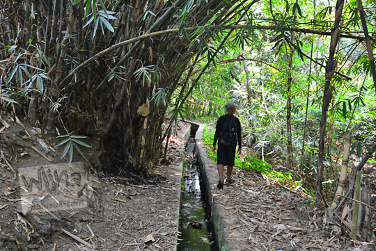 seorang pria berjalan kaki menyusuri saluran irigasi di dusun segaran tirtomartani kalasan sleman
