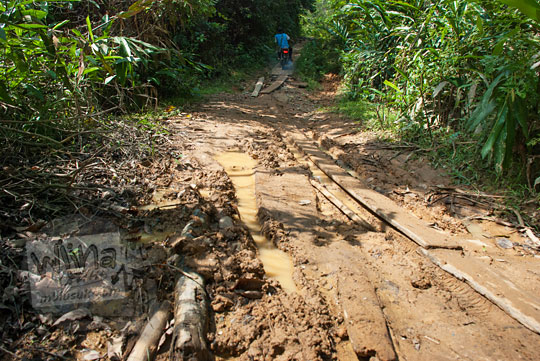 foto jalan tanah berlumpur menuju ke objek wisata alam air terjun panisan di desa tanjung kecamatan koto kampar hulu riau pada zaman dulu April 2016