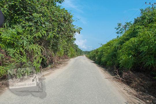 foto contoh suasana di sepanjang jalan raya truk pengangkut batu di pelosok kabupaten kampar riau pada zaman dulu April 2016
