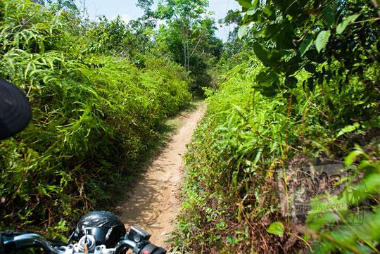 foto naik motor menembus jalan semak belukar menuju air terjun panisan di desa tanjung kecamatan koto kampar hulu riau pada zaman dulu April 2016
