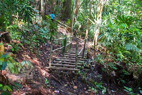 foto jalan setapak hutan ke air terjun panisan di desa tanjung kecamatan koto kampar hulu riau pada zaman dulu April 2016