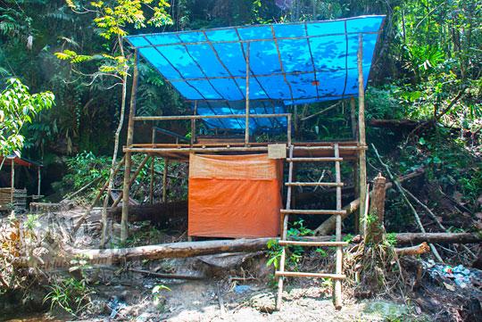 foto gubuk beratap terpal di dalam hutan gambut riau pada zaman dulu April 2016