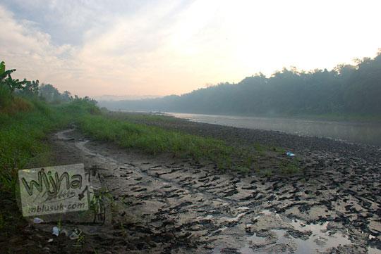 tanah berlumpur di pinggir sungai progo