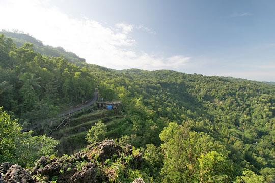 hutan bukit seloharjo pundong
