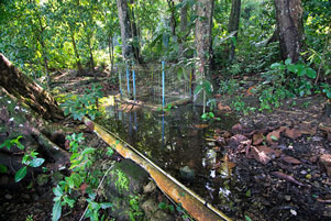 Sumber Berkah Dusun Geger Seloharjo