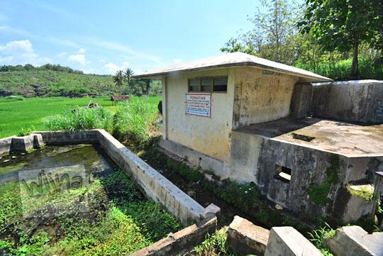 suasana persawahan di dekat lokasi rumah air sendang ngembel desa karangtengah wonosari gunungkidul