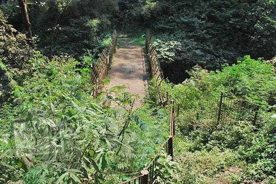 jembatan di dasar curug omas maribaya