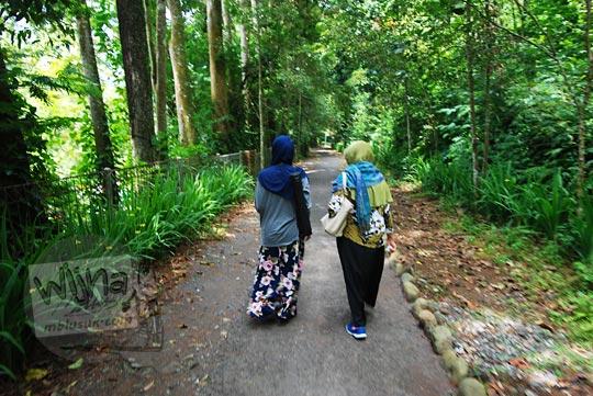 jalan setapak di taman hutan raya juanda maribaya