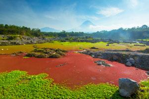 Thumbnail artikel blog berjudul Menunggu Matahari Terbit di Telaga Merah Gunung Merapi