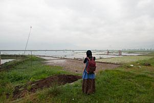 Thumbnail untuk artikel blog berjudul Potret Rawa Pening dari Pinggir Rel Kereta