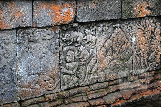 relief cerita monyet di dinding kolam petirtaan candi penataran