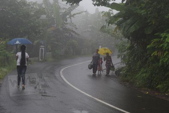 ibu-ibu warga dusun plono timur berangkat menuju pasar plono dengan berjalan kaki di jalan berkabut tebal sambil menggenggam payung