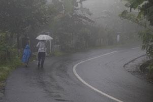 Selubung Kabut di Plono Timur