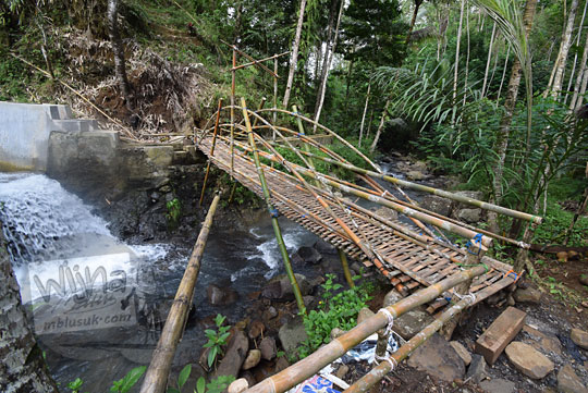 jembatan bambu girimulyo kulon progo