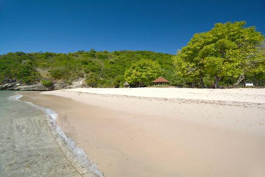 hamparan pasir pantai pink lombok