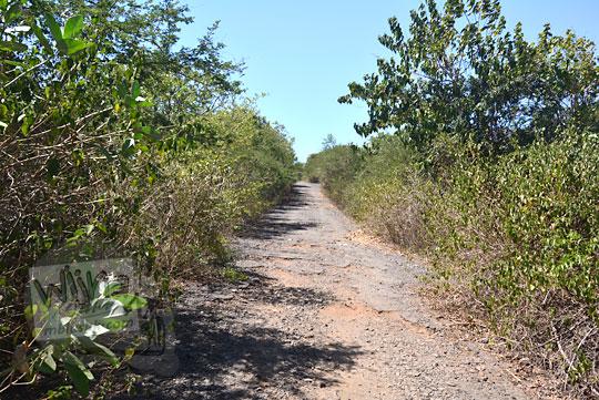 jalan rusak tanjung ringgit lombok