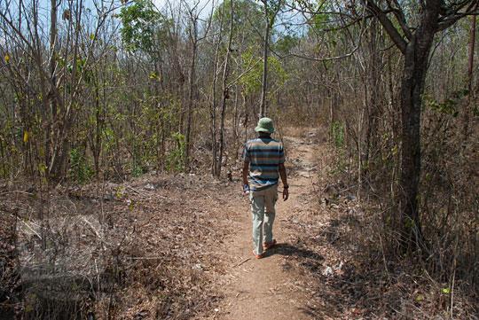 hutan setapak gersang prambanan