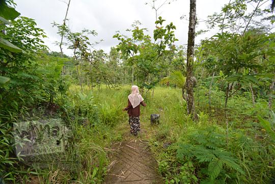 rencana tempat lokasi parkir pengunjung air terjun kembar mayang atau curug ngedok di kaligesing purworejo