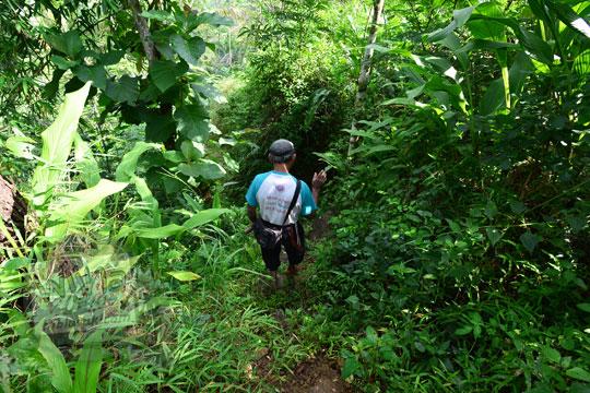 suasana hutan menuju air terjun kembar mayang atau curug ngedok di kaligesing purworejo