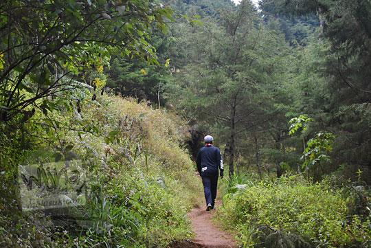 jalan setapak ke pos 2 pendakian gunung prau via kalilembu