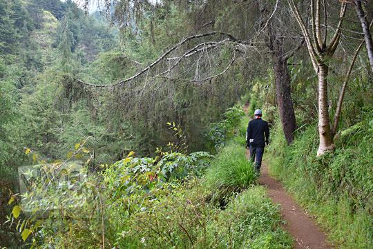 suasana jalan hutan ke pos 2 pendakian gunung prau jalur kalilembu