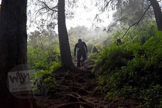 kabut tebal hutan ke pos 3 pendakian gunung prau via kalilembu