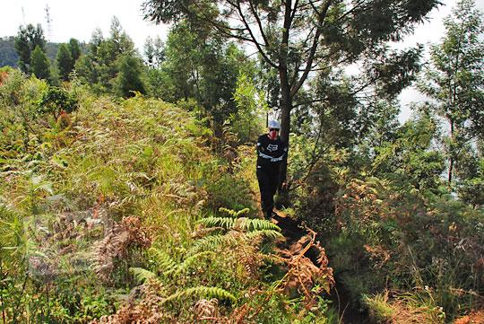 jalan setapak dari pos 3 ke puncak gunung prau jalur kalilembu