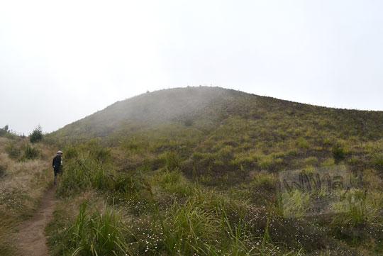 pemandangan bukit teletubbies kawasan puncak gunung prau