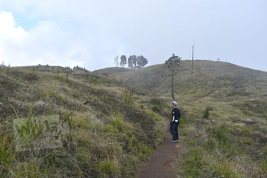pendaki pria berjalan padang rumput kawasan puncak gunung prau