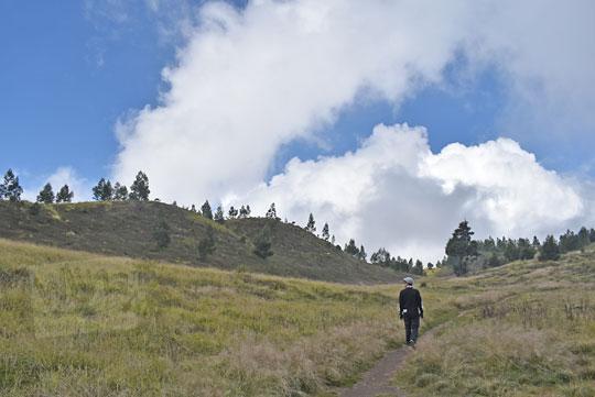 panorama jalan setapak padang rumput ke bukit teletubbies gunung prau