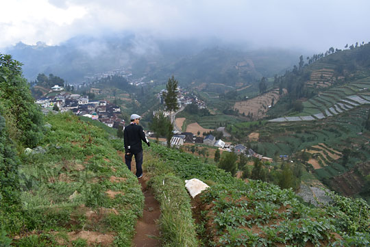turun menyusuri ladang dari pendakian gunung prau jalur kalilembu