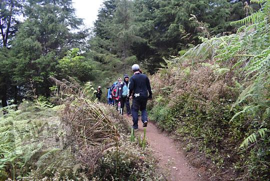 berpapasan dengan rombongan pendaki wanita di jalur pendakian gunung prau kalilembu