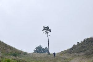 Pertama Naik Gunung, Pertama ke Prau via Kalilembu