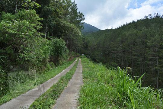 jalan hutan keluar dusun pranten grabang magelang