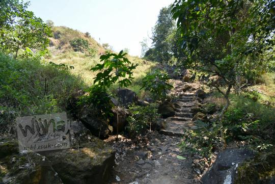 jalan hutan bukit seribu satu manguntapa