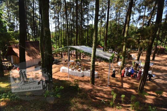 menikah hutan pinus bukit seribu satu manguntapa