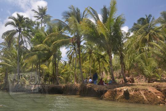 piknik pinggir sungai cokel pacitan