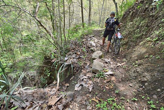 jalan hutan curug banyunibo gedangsari gunungkidul