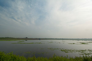 Thumbnail artikel blog berjudul Teronggok di Pinggir Waduk Lalung