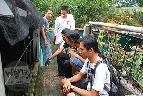 suasana kunjungan ke kolam pemeliharaan ikan arapaima gigas di Plosokuning, Minomartani, Ngaglik, Yogyakarta di tahun 2010