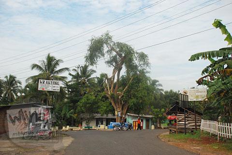 Perempatan beringin terong adalah titik akhir tanjakan Cinomati desa Wonolelo-Terong, Bantul di tahun 2009