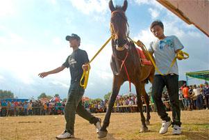 Pacuan Kuda ala Desa Kebondalem Kidul